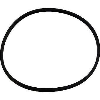 Pentair 51001000 Quad Lid Ring for 1.5