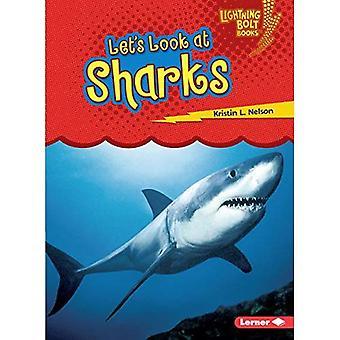 Laten we eens kijken naar haaien