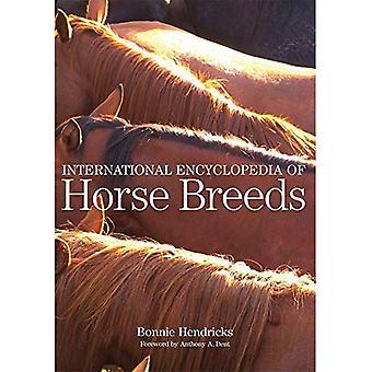 Livre internacional das raças de cavalo