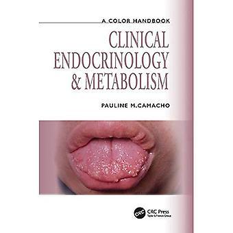 Endokrinologi og metabolisme