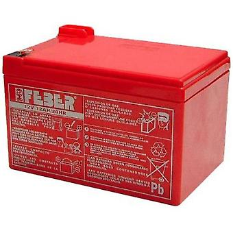 Feber Batteries 10v 12 Ah