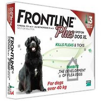 Frontline Plus Spot på ekstra store hund 40-60kg 3 pipetter