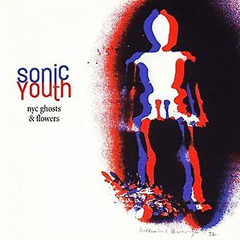 Sonic Youth - Nyc Ghosts [Vinyl] USA import