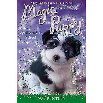 Spellbound at School #11 (Magic Puppy)