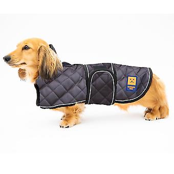 Thermal harness dachshund quilted coat