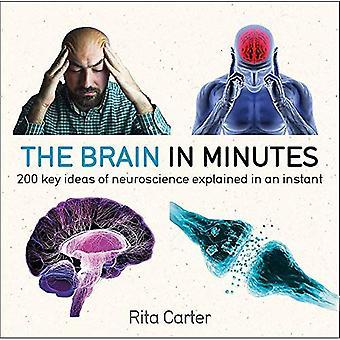 Le cerveau en quelques Minutes