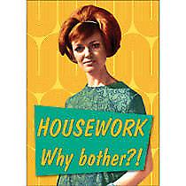 Housework..Why Bother? funny fridge magnet     (hb)