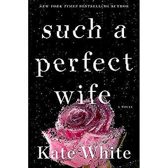 Such a Perfect Wife: A Bailey Weggins Mystery (Bailey Weggins Mystery)