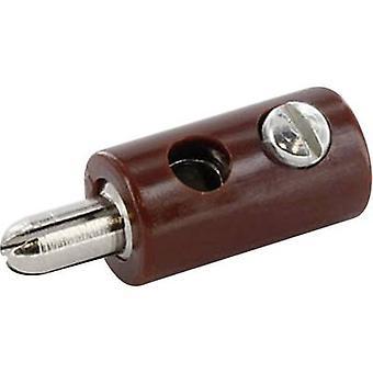 econ connect HOSBR Jack plug Plug, straight Pin diameter: 2.6 mm Brown 1 pc(s)