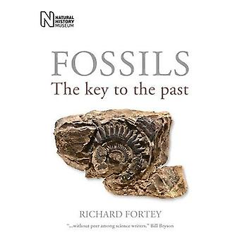Fossils: The Key to the Past