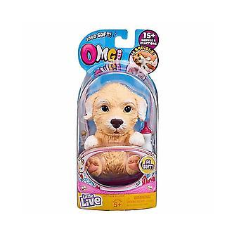 Liten levande sällskapsdjur OMG sällskapsdjur Poodles hundvalp