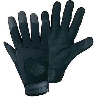 FerdyF. 1911 Size (gloves): 7, S