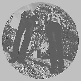 Ty Segall & hvide hegn - hår [Vinyl] USA importerer