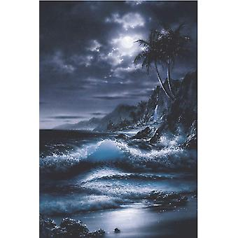 Poster - Studio B - 24x36 Moonrise Wall Art CJ3682