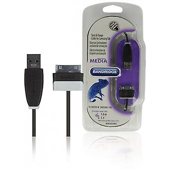 Bandridge Samsung TAB sync & charging cable 1.00 m