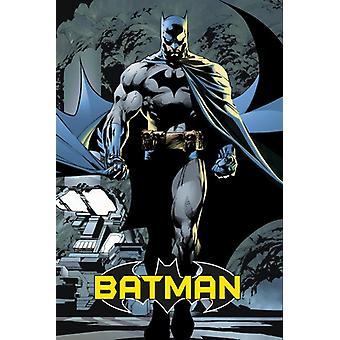 Batman Blue Poster Poster Print