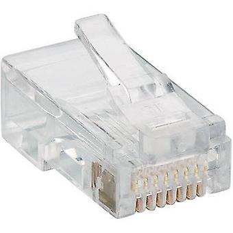 Lumberg P 129 Modular Plug 8p8c RJ45 Plug, straight Transparent