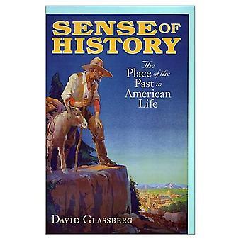 Sinn der Geschichte: der Ort der Vergangenheit im amerikanischen Leben