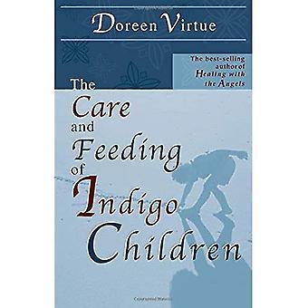 Care and Feeding of Indigo Children