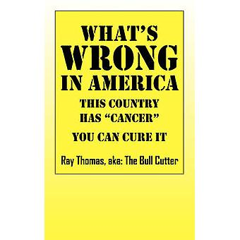 Whats WRONG in America  This country has cancer You can cure it by Thomas & Ray aka The Bull Cutter