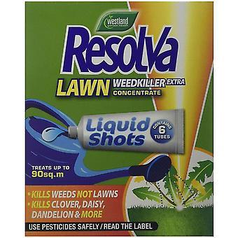 Westland Resolva 24h pelouse herbicide liquide coups (paquet de 6)