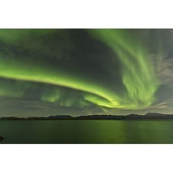 Aurora borealis over Fish Lake Yukon Canada Poster Print