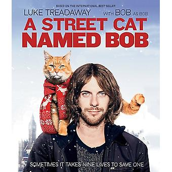 Street Cat Named Bob [Blu-ray] USA import