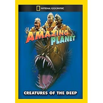 Amazing Planet: Creatures of the Deep [DVD] USA import