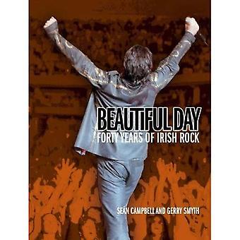 Beautiful Day: 40 Years of Irish Rock