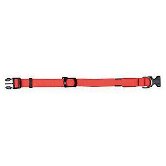 Trixie Collar Flash 25 mm Naranja señal (Dogs , Collars, Leads and Harnesses , Collars)