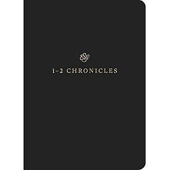 ESV skriften Journal: 1-2 Chronicles