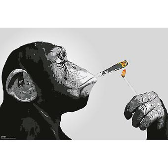 Steez Smoking Maxi Poster 61x91.5cm