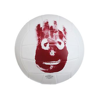Mr. Wilson-cast away volleyball