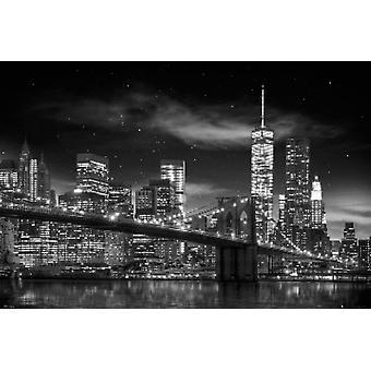 NEW YORK CITY Freedom Tower schwarz & weißes Plakat Poster drucken