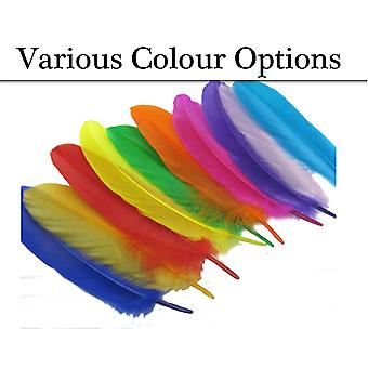 12 Goose Quill Coloured Feathers for Crafts