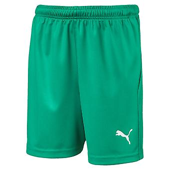 PUMA League of shorts core w letter Jr kids of soccer shorts pepper green-white