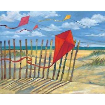 Stranden drakar röd affisch Skriv av Paul Brent