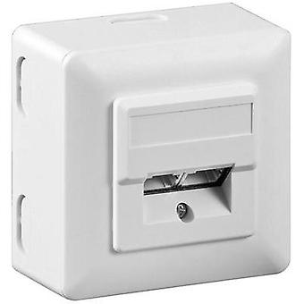 Network outlet Surface-mount CAT 5e 2 ports Goobay White