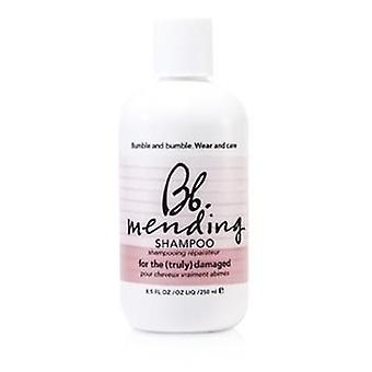 Mending Shampoo (For the Truly Damaged Hair) - 250ml/8.5oz
