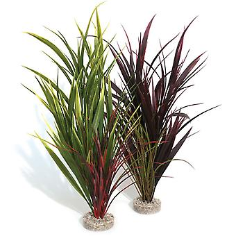 Sydeco Natural Plants Coloured Wild Grass Giant 44cm (Pack of 6)