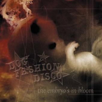 Hund mode Disco - Embryo i Bloom [CD] USA import