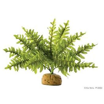 Exo Terra EXO TERRA BOSTON FERN, SMALL (Reptiles , Decoration , Artificial Plants)