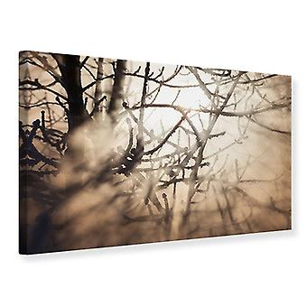 Leinwand drucken Filialen in Nebelscheinwerfer