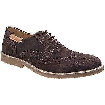 Cotswold Mens Chatsworth Suede Oxford Brogue Lace Up Casual Shoes