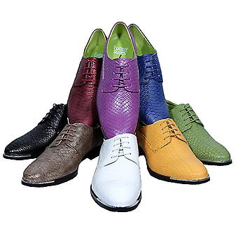 Shoe Rocky Dandyschuh to suit 8 colors 6 sizes DELUXE