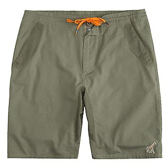 LRG Happy Campers True Straight Walkshort Dusty Olive