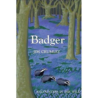 Badger - Encounters in the Wild