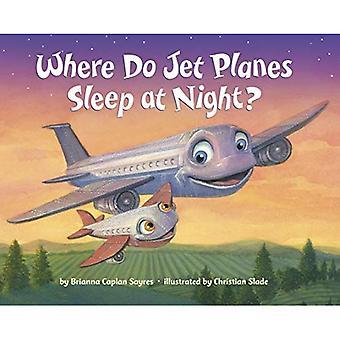 Jos Jet koneet nukkua yöllä? [Kuvakirja]