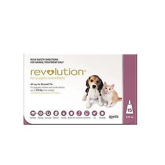 Revolution Pink Pup/Kit 15 Pack