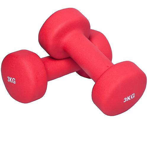 6 KG (2x3,0) Halt�re fitness en vinyle